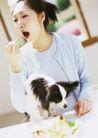 家庭宠物0056,家庭宠物,休闲生活,