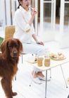家庭宠物0060,家庭宠物,休闲生活,丰盛早餐 小方桌 吃东西