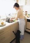 家庭宠物0061,家庭宠物,休闲生活,老婆 厨房 洗菜