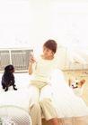 家庭宠物0064,家庭宠物,休闲生活,黑狗 床铺 看书
