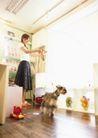 家庭宠物0065,家庭宠物,休闲生活,哈巴狗 客厅 地板