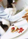 家庭宠物0067,家庭宠物,休闲生活,草莓 点心 早餐