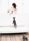 家庭宠物0088,家庭宠物,休闲生活,窗台 室内 宠物