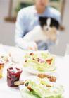 家庭宠物0089,家庭宠物,休闲生活,食物 宠爱 成长