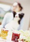 家庭宠物0099,家庭宠物,休闲生活,狗食 喂养 食品