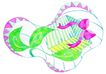生日礼物0062,生日礼物,标题插画,垫子 绿叶 花纹