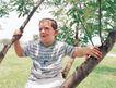 儿童表情0060,儿童表情,亲子教育,顽皮孩子 户外 爬树