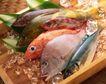日式美食0057,日式美食,美食,鲜鱼 各种鱼类 冰镇