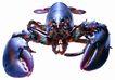 食材海鲜0069,食材海鲜,美食,龙虾 钳子 海味