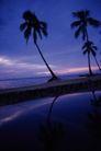 海滩0094,海滩,海洋风情,椰树 倒影 水面