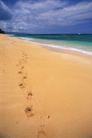 海滩0099,海滩,海洋风情,足印 散步 沙子
