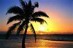 海边景致0050,海边景致,海洋风情,金色霞光