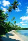 海边景致0061,海边景致,海洋风情,蓝天 椰树 白云