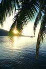 海边景致0073,海边景致,海洋风情,海岸 矮山 朝阳