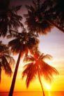 海边景致0075,海边景致,海洋风情,金色 阳光 落日