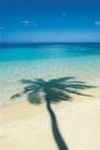 海边景致0079,海边景致,海洋风情,树影 映射 水面