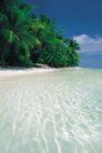 海边景致0090,海边景致,海洋风情,风情 海花 树木
