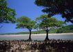 人间天堂0063,人间天堂,海洋风情,蓝天 绿树 景色