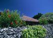 人间天堂0068,人间天堂,海洋风情,小屋 蓝天 绿色