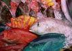 人间天堂0091,人间天堂,海洋风情,海鱼 市场 食物