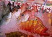 人间天堂0100,人间天堂,海洋风情,超市 海鱼 购物