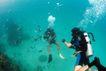 海底探索0019,海底探索,海洋风情,身背 氧气瓶 冒泡