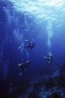 海底探索0027,海底探索,海洋风情,海底 探索 征服