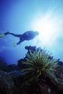 海底探索0036,海底探索,海洋风情,海澡 海洋 石头