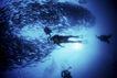 海底探索0046,海底探索,海洋风情,潜水 水底探险