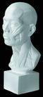 石膏像0058,石膏像,古典艺术,