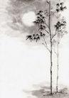 古代风景0074,古代风景,中华文化,月夜 竹枝 黑叶