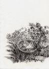 古代风景0083,古代风景,中华文化,风光 图象 古代