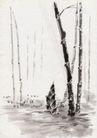 古代风景0088,古代风景,中华文化,农村 竹子 发芽