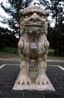 中国雕刻0072,中国雕刻,中华文化,石狮 站立 姿态