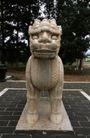 中国雕刻0077,中国雕刻,中华文化,兽雕 突出 眼球