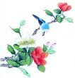 花鸟国画0062,花鸟国画,中华文化,鸟儿 花朵 绿枝