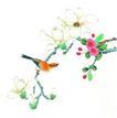 花鸟国画0065,花鸟国画,中华文化,花朵 花瓣 鸟鸣