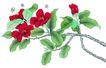 花鸟国画0077,花鸟国画,中华文化,横卧 花叶 绽放