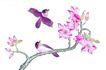花鸟国画0086,花鸟国画,中华文化,幽美 动态 展示