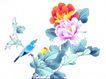 花鸟国画0091,花鸟国画,中华文化,国花 牡丹 富贵