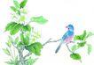 花鸟国画0097,花鸟国画,中华文化,名画 自然 气息