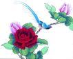 花鸟国画0100,花鸟国画,中华文化,月季 黄莺 树枝