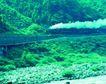 火车百科0067,火车百科,交通,山坡 绿色 交通