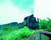 火车百科0074,火车百科,交通,穿越 绿色 山野