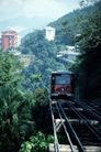 火车百科0088,火车百科,交通,铁轨 树木 穿过