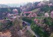 宽广大道0184,宽广大道,综合,农村 自然景观