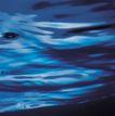 运动水波0024,运动水波,综合,海水 蔚蓝 波纹