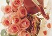 情侣婚姻物品0149,情侣婚姻物品,喜庆婚姻,