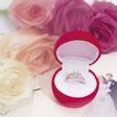 情侣婚姻物品0180,情侣婚姻物品,喜庆婚姻,玫瑰花 戒指 婚纱照