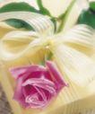 鲜花装饰0022,鲜花装饰,鲜花,郁金香 鲜花 花瓣